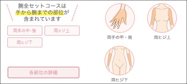 銀座カラー 腕全セット 施術範囲